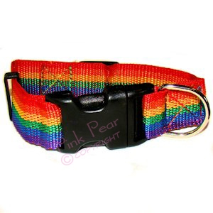 rainbow dog collar - large size