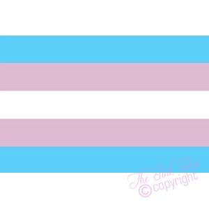 transgender fridge magnet