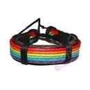 rainbow leather wristlet