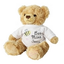 bee mine teddy