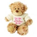Pink Tatty Teddy Message Bear